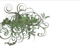 verlässt üppiges Blumenblatt der Blume 4k Ernten Sträuche Buschbetriebsgraswachsen lizenzfreie abbildung