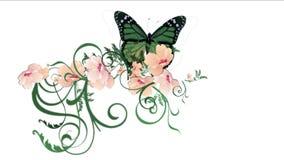 verlässt üppiges Blumenblumenblatt des Schmetterlinges 4k Ernten Sträuche Buschbetriebsgraswachsen stock abbildung