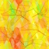 Verlaat contouren, helder roze oranje hand-drawn yelow rood groen modern in bloemen naadloos patroon, de abstracte achtergrond vo Royalty-vrije Stock Fotografie