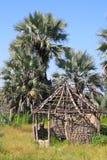 Verlagings Afrikaanse Hut met Palmen in Noordelijk Botswana Royalty-vrije Stock Foto