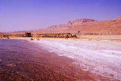 Verlassen Sie in Israel auf dem Bereich des Toten Meers Lizenzfreies Stockbild