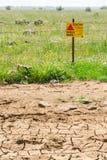 Verlassen Sie Minenfeld des getrockneten Landes und grünes der Ruhe Lizenzfreie Stockfotografie