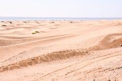 Verlassen Sie mit Sanddünen in Gran Canaria Spanien stockfotografie