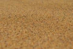 Verlassen Sie Sand Stockfotos