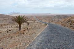 Verlassen Sie Straße zum Nirgendwo auf Boa Vista, Afrika Lizenzfreies Stockfoto