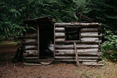 Verlassen zerstörte wenig hölzerne Struktur, die in einem Wald gefunden wurde stockbild