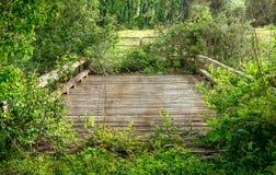 Verlassene überwucherte Holzbrücke mit Geländer lizenzfreie stockfotografie