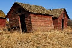 Verlassene alte Hallen im trockenen Gras Lizenzfreie Stockfotografie