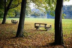 Verlassene Bänke in einem Park lizenzfreie stockfotos