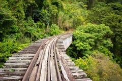 Verlassene Bahngleise im kolumbianischen Dschungel lizenzfreie stockfotografie