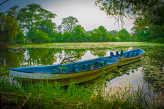 Verlassene Boote Stockfoto