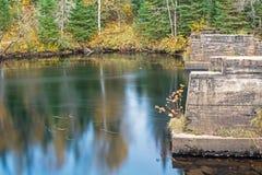 Verlassene Brücken-Säulen auf dem York-Fluss lizenzfreie stockbilder