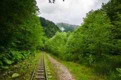 Verlassene Eisenbahn im Sommergebirgswald mit Blatt- Bäumen in Gaucasus, Mezmay Stockfoto