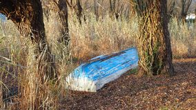 Verlassene hölzerne Boote auf dem Ufer des Sees, in den Schilfen, Herbstsaison Stockfotografie