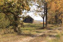 Verlassene hölzerne Scheune auf dem Gebiet nahe Wald im Herbst Stockbilder