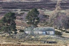 Verlassene Kate von Ostern Crannich auf Dava Moor in Schottland lizenzfreies stockbild