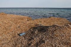 Verlassene Plastikflasche auf der Küste Stockfotos