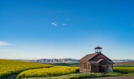 Verlassene Schule, die auf den Gebieten des Weizens und des Canola in Mittel-Oregon sitzt Lizenzfreies Stockfoto