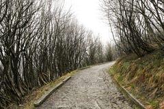 Verlassene Straße auf dem Hügel Lizenzfreies Stockfoto