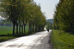 Verlassene Straße mit einem Radfahrer Lizenzfreie Stockbilder