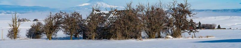 VERLASSENER BAUERNHOF IN SCHNEIENDEM WINTER-WETTER lizenzfreies stockbild