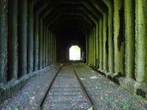 Verlassener Eisenbahn-Tunnel Stockfotografie