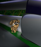 Verlassener Hund Stockbilder
