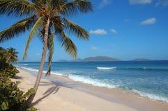 Verlassener karibischer Strand Stockbild