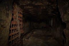 Verlassener Keller mit rostigem Gittertüruntergrund lizenzfreies stockfoto