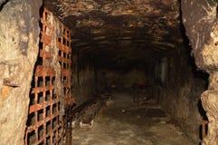 Verlassener Keller mit rostigem Gittertüruntergrund lizenzfreie stockfotos