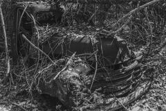 Verlassener LKW, der in der Forest In The Adirondack Forest-Konserve im Staat New York verrostet Stockbilder