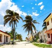 Verlassener mexikanischer Schotterweg im Küstendorf mit mehrfarbigen Gebäuden und hohe Kokosnusspalmen und eine Kokosnuss, die in stockfotografie