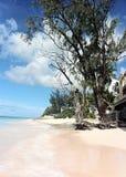 Verlassener Strand stockbild