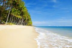 Verlassener tropischer Strand mit Palmen Stockfotos