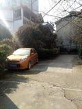 Verlassenes Auto und ein Kätzchen durch die Tür des Landhauses stockfotografie