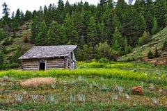 Verlassenes Blockhaus, Garnet Mountains, Montana Lizenzfreies Stockfoto