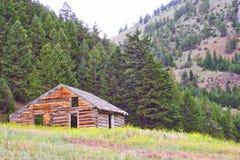 Verlassenes Blockhaus, Garnet Mountains, Montana Stockbild