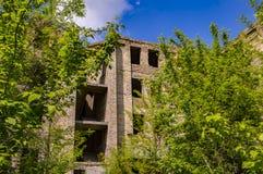 Verlassenes Gebäude überwältigt mit Bäumen unter einem blauen Himmel stockbilder