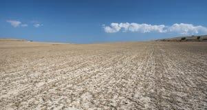 Verlassenes Getreideackerland nachdem dem Ernten Lizenzfreies Stockfoto
