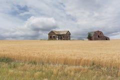 Verlassenes Gutshaus und Scheune auf einem Weizengebiet Lizenzfreie Stockfotos
