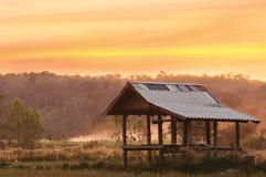 Verlassenes Haus in den landwirtschaftlichen Wäldern. Am Sonnenuntergang Stockfoto