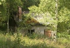 Verlassenes Haus im Wald Lizenzfreie Stockfotos