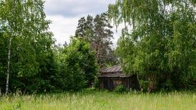 Verlassenes Haus im Wald im Sommer Stockfotografie