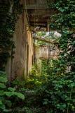 Verlassenes Haus in Montenegro Stockbild