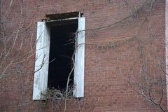 Verlassenes Herstellungsgebäudefenster Lizenzfreie Stockfotos