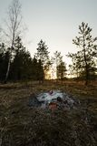 Verlassenes kampierendes Feuer bei einem Sonnenuntergang in einem Wald lizenzfreie stockfotografie