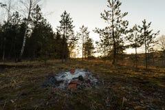 Verlassenes kampierendes Feuer bei einem Sonnenuntergang in einem Wald lizenzfreies stockfoto