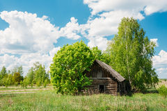 Verlassenes kleines Land-Blockhaus in der Ausschluss-Zone nach Tschornobyl-Katastrophe Stockfoto