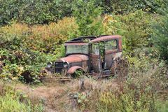 Verlassenes Weinlese-Auto überwältigt mit Unkräutern lizenzfreie stockfotografie