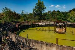 Verlaten afvalwaterzuiveringsinstallatie De overwoekerde tank van de rioleringsreiniging met groen water royalty-vrije stock afbeelding